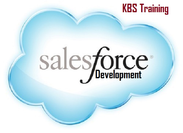 How to Become a Certified Salesforce Developer
